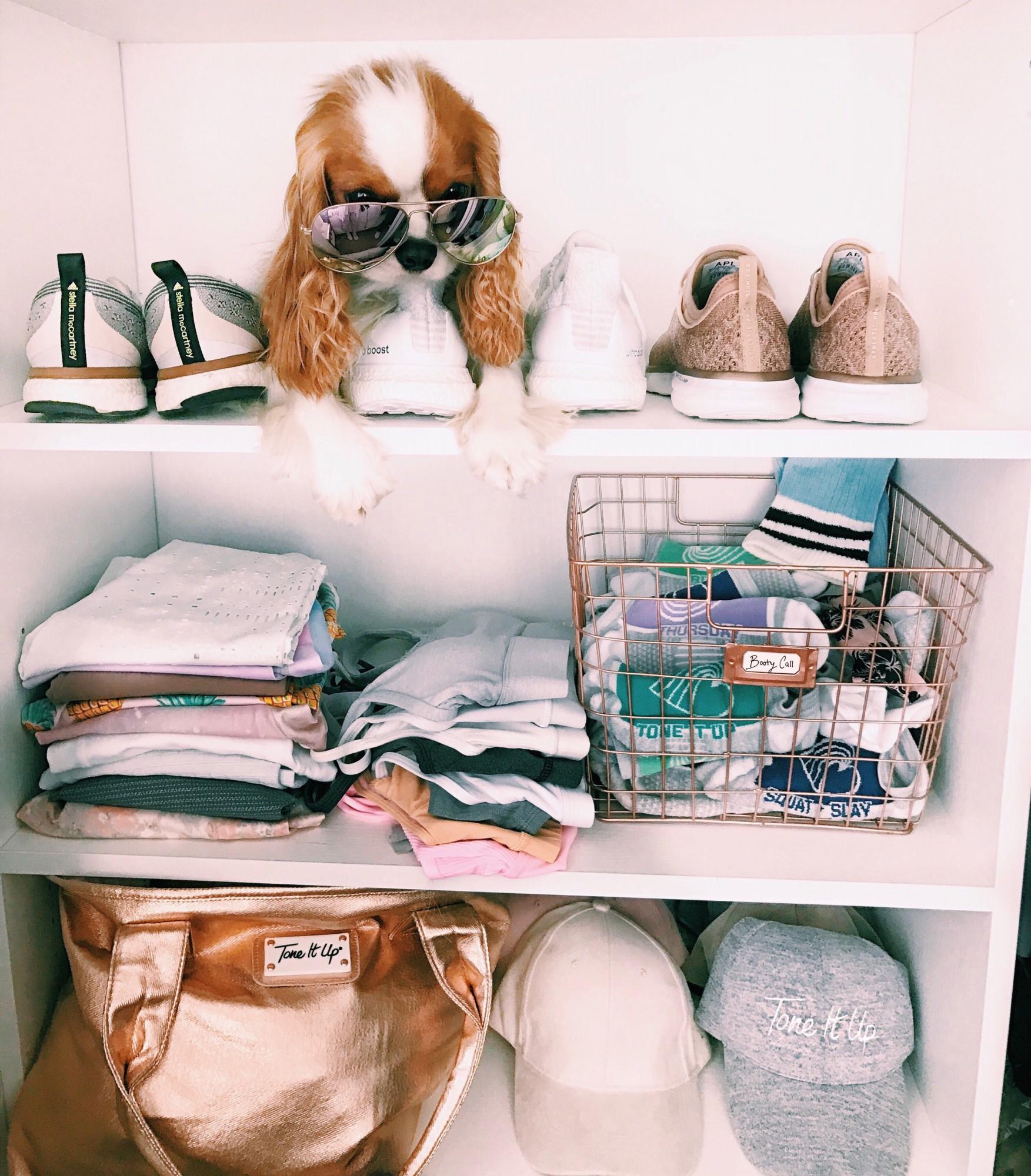 tone it up bikini series prep for success clean closet